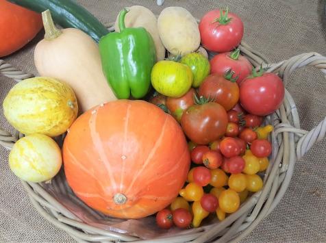 Les Jardins de Champlecy - Panier De Légumes De Saison 5 Kg