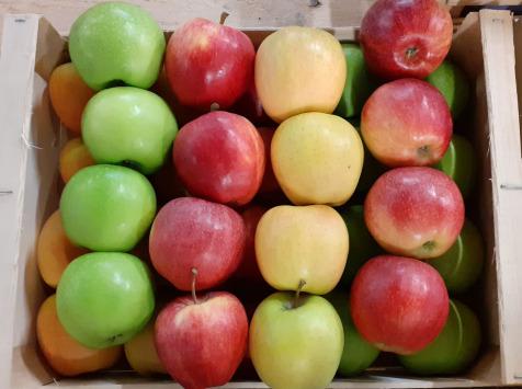 Le Châtaignier - Pommes De Variétés Incontournables -  Assortiment 6kg
