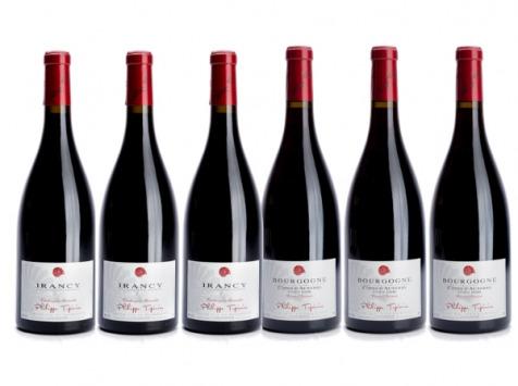 Domaine Tupinier Philippe - Lot De 2 Vins Rouges : Bourgogne Côte D'Auxerre Rouge 2016  Et Irancy AOC 2018- 6 Bouteilles