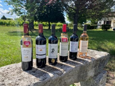 Vignobles Fabien Castaing - Lot AOC Bergerac : Rouge et Rosé