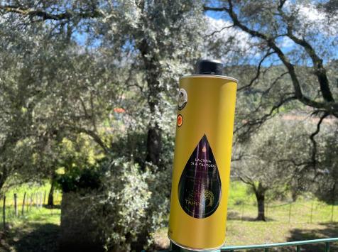 Depuis des Lustres - Comptoir Corse - Huile d'Olive Corse - Lacrima Di A Filitosa - Domaine de Tappa