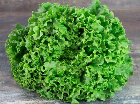 La Boite à Herbes - Lot De 2 Salade Batavia Verte Bio