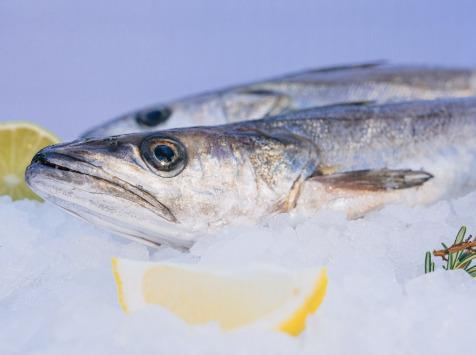 Côté Fish - Mon poisson direct pêcheurs - Merlus 500g