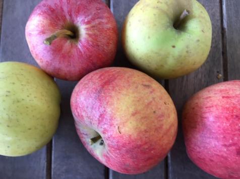 Ferme du Mont de Cuy - Pommes Mélange de variété - 1kg