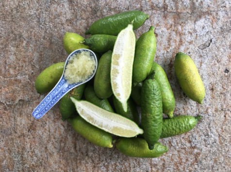 Le Jardin des Antipodes - Citron Caviar - Faustrime - 3kg