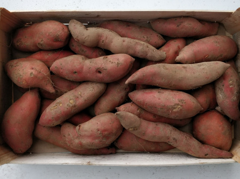 EARL Langevine - Patate Douce 4kg