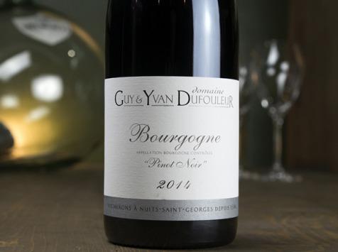 Dyvin - Domaine Guy & Yvan Dufouleur - Bourgogne Pinot Noir - Lot De 3 Bouteilles