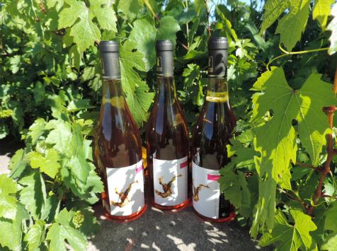 Domaine des Bourrats - Saint Pourçain AOC Rosé - 3 bouteilles