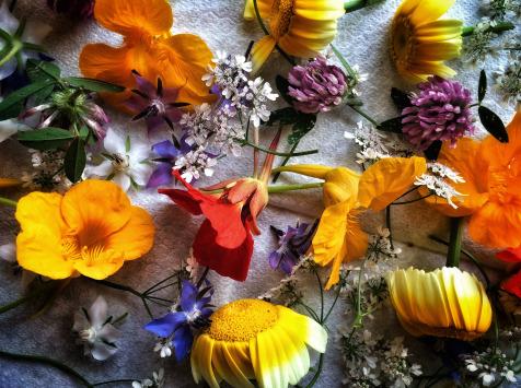 La Ferme d'Artaud - Barquette De Fleurs Comestibles Diverses