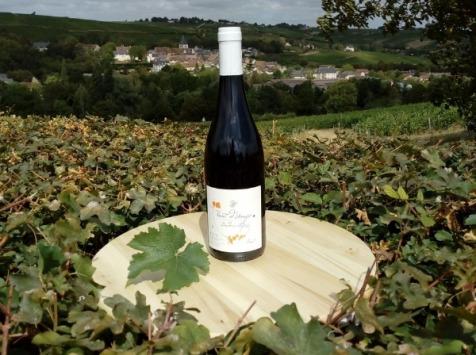 Sancerre Doudeau-Leger - Vent d'Ange - Vin de Pays du Val de Loire Rouge IGP 2019 - 1 Bouteille