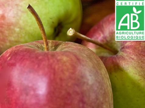 Mon Petit Producteur - Pomme Bio Arlet - 3kg
