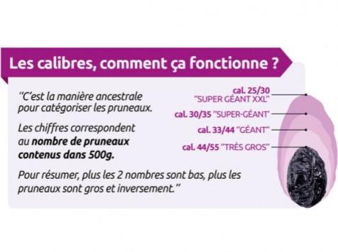 Maison du Pruneau - Pruneaux d'Agen IGP Bio Dénoyautés (calibre 44/55 - Très Gros) - Sachet 500g