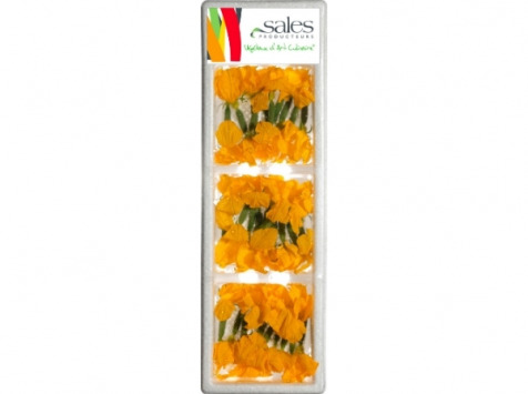 Maison Sales - Végétaux d'Art Culinaire - 10- Concombre Fleur - 30 Pièces
