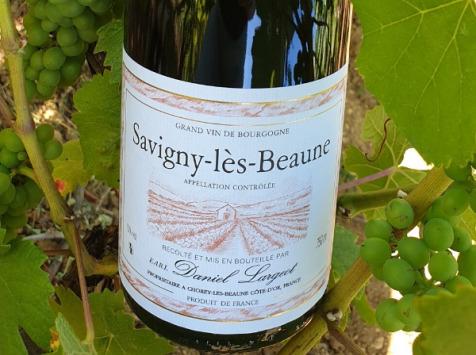 Domaine Daniel Largeot - AOC Savigny-Lès-Beaune 2017 - 3 Bouteilles