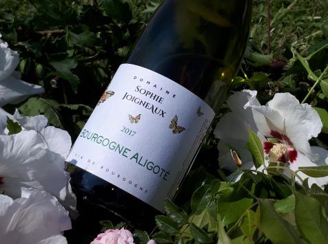 Domaine Sophie Joigneaux - AOP Bourgogne-Aligoté Millésime 2020