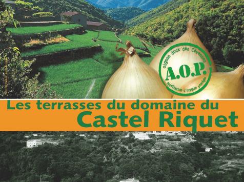 Le Castel Riquet - Oignon doux des Cévennes AOP - Oignon Doux Des Cévennes AOP - 3,5kg