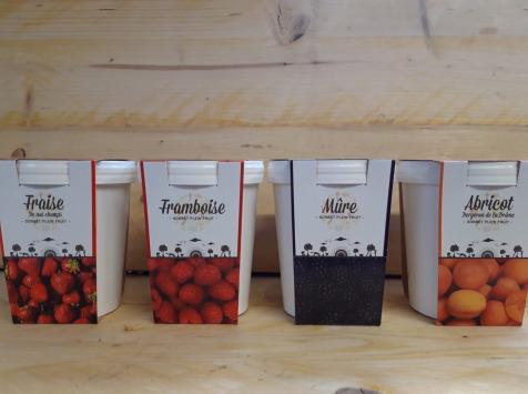 La Ferme du Logis - Assortiment de sorbets : Fraise, Framboise, mûre et Abricot
