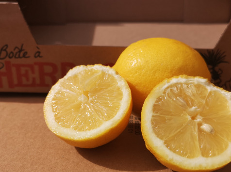 La Boite à Herbes - Citrons Verna Bio X2