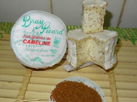 Fromagerie de la Chapelle Saint Jean - Bray Aux Graines De Cameline - 12 Pièces