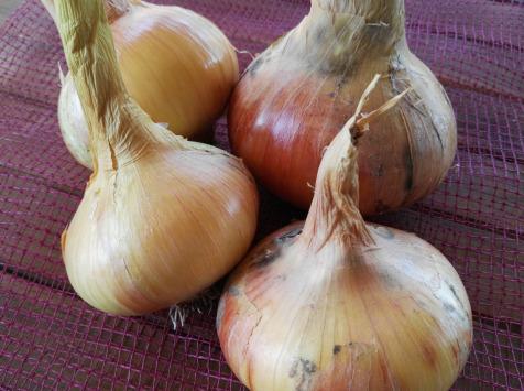 Cocotte et Potiron - Oignons Jaunes Bio - 1kg