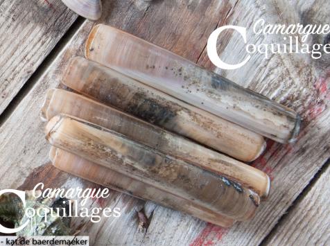 Camargue Coquillages - Couteaux De Camargue Pêché Au Sel- Pêche Responsable