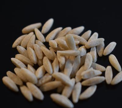Païs'an Ville® - Pâtes Artisanales Bio Grain De Pâtes Blé Ancien Semi-Complet Thaï 1 Kilo