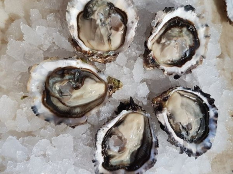 Camargue Coquillages - La Perle De Camargue Huîtres Creuses Bio 6 Douzaines