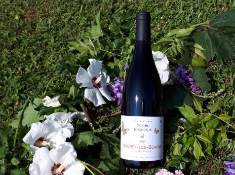 """Domaine Sophie Joigneaux - AOP Chorey-les-Beaune """"les Beaumonts"""" 3x75cl Millésime 2019"""
