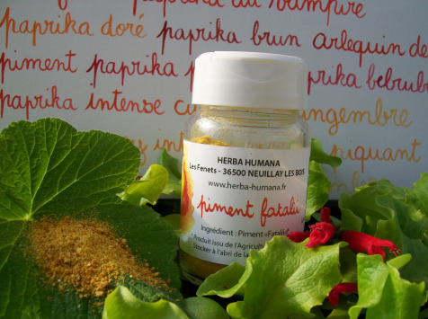 HERBA HUMANA - Piment Fatalii Bio Cultivé en France 15 g