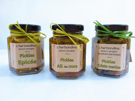 L'herbandine - Trio de Pickles Sauvages – Format Moyen