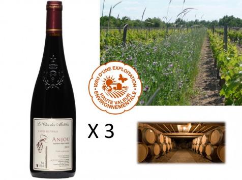 Le Clos des Motèles - AOC Anjou Rouge 2019 : Cuvée Sainte-Verge (3 Bouteilles)
