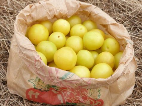 Ferme des petites Brossardières - Prunes jaunes, 500 g
