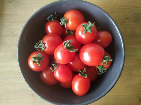 Au Champ - Les bio p'tits légumes - Tomate Cerise Bio