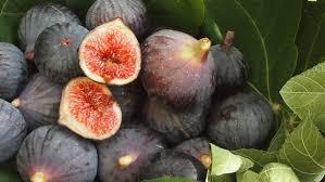 Graines Précieuses - Figues Noires De Solliès Confites Au Jus De Raisin Noir Bio Locale
