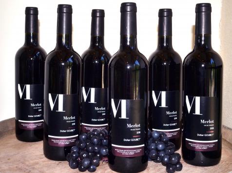 Didier Goubet - Merlot Bio - Vin De France Carton 6