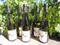 Domaine des Bourrats - Saint Pourçain AOC Blanc - Cuvée des Bergerons - 6 bouteilles