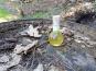 Vinaigres de la Carrière - Vinaigre de Cidre à la Verveine bio - 100 ml