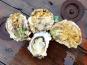 Camargue Coquillages - La Perle De Camargue Huîtres Creuses Bio - Grosses À Cuire