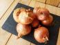 Gourmets de l'Ouest - Oignons roses de Saint-Malo