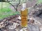 Vinaigres de la Carrière - Eau de Vie de Pomme aux Bourgeons de Sapin - 50 cl