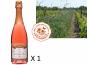 Le Clos des Motèles - AOC Crémant De Loire Rosé Sec 1 Bouteille