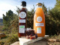 Terres En Vie - Goûter des Gastronomes : Caramel de Châtaignes, Jus de Pomme, Pâtes de Fruits