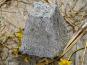 Le Petit Perche - Pyramide Demi Sec de Chèvre