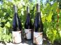 Domaine des Bourrats - Saint Pourçain AOC Rouge Tradition - 3 bouteilles