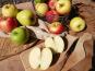 Le Verger de Crigne - Colis 4kg Panaché De Pommes Bio