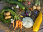 Ferme Sinsac - Panier de legumes variés Bio - 3 kg