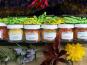 HERBA HUMANA - Coffret Piments 6 Flacons Cultivé en France