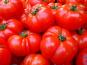 Le Châtaignier - Tomates coeur de boeuf - 1 Kg
