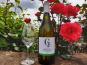 Château Les Gérales - Bergerac Sec Floral, Fruité, Aromatique, Élevé Sur Lies - 6 bouteilles