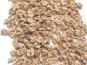 Les Vergers De Tailhac - Cerneaux de noix frais (sous-vide)
